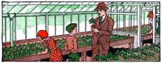 Children at greenhouse with father