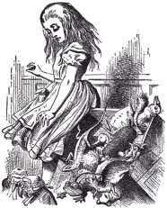 ...and she jumped up in such a hurry that she tipped over the jury-box with the edge of her skirt...